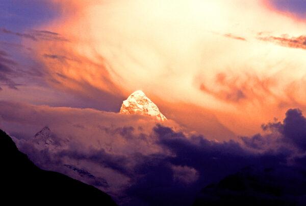 True Light: Ordinary People on the Extraordinary Spiritual Path of Sukyo Mahikari